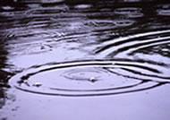 Ondes dans l'eau
