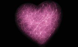 Cœur, esprit par Jude Beck (unsplash.com)