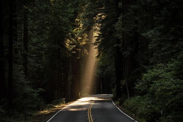 Lumière sur route par John Towner (unsplash.com)