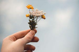Petit bouquet par Isaac Mehegan (unsplash.com)