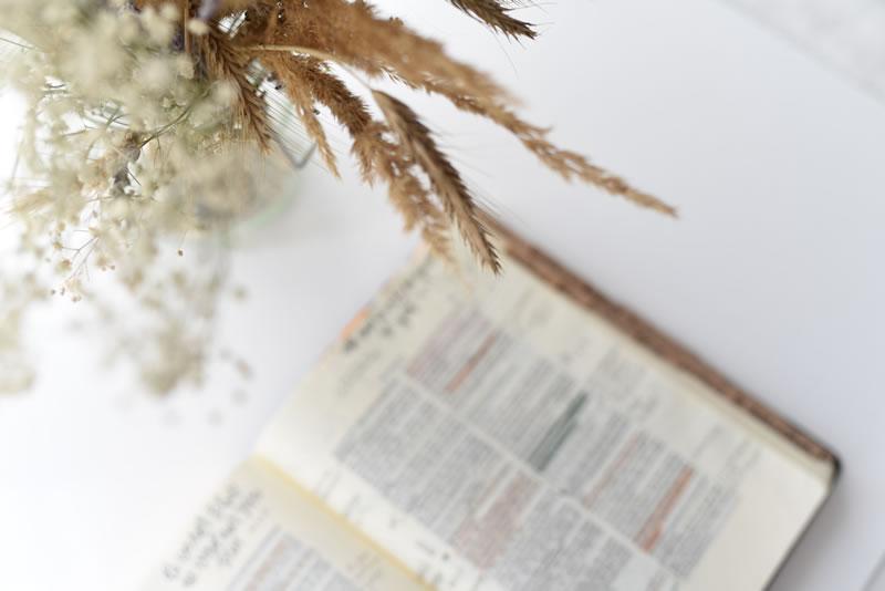 Bible et blé par Jasmin Ne (unsplash.com)
