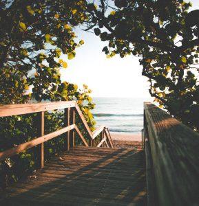 Path, Sea by Kenrick Mills (unsplash.com)